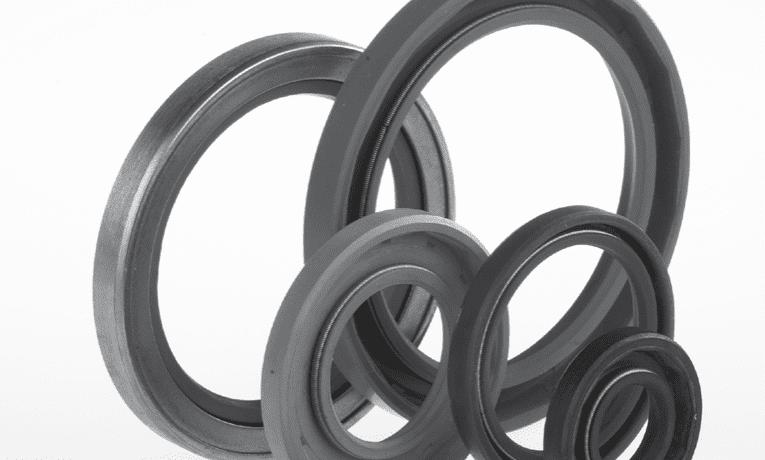 paraoli anelli di tenuta standard